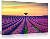 Lila Lavendel Field mit Orange Sonnenuntergang Leinwand Kunstdruck Bild, orange/violett, A1 76x51 cm (30x20in)