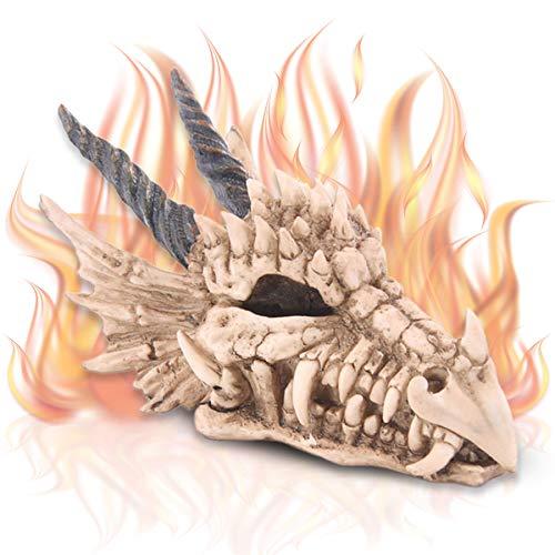 mtb more energy Spardose ''Dragon's Treasure'' | Drachen-Schädel Sparbüchse | 11x9x19 cm | Figur Deko Fantasy