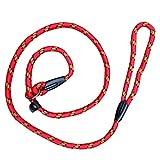 Da.Wa Haustier Hund Nylon Verstellbare Loop Slip Leine Seil Blei(1.2m,Rote,Set of 1)