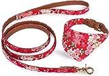 Puccybell Blumen Hundehalsband mit Tuch und Hundeleine (1,2m) im Set, Bandana Halsband und Leine für kleine und mittelgroße Hunde HLS004 (L, rot)