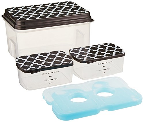 fit-fresh-lunch-on-the-go-set-with-ice-pack-3-reusable-containers-with-lids-bpa-free-by-fit-fresh