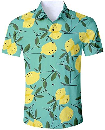 Goodstoworld Camisa Hawaiana para Hombre Camisa de Manga Corta Informal  Camisas de Vacaciones 3D Camisa Estampada 931f231bf17b0