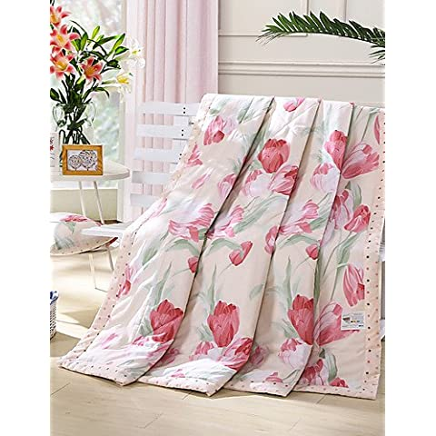 YangR*ben progettato reversibile e confortevole estate moda Quilt , twin