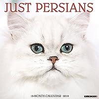Persians 2019 Calendar