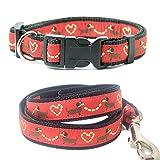 Halsband + Hundeleine set Dackel rot S Länge 25 - 38 cm Breit 2 cm / 100 cm x 2 cm