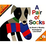 A Pair of Socks (MathStart 1)