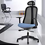 Life Carver Ergonomic High-Back Executive Mesh Chair Desk Armchair Lumbar Support Computer Office Chair With Adjustable Headrest (Black with Blue
