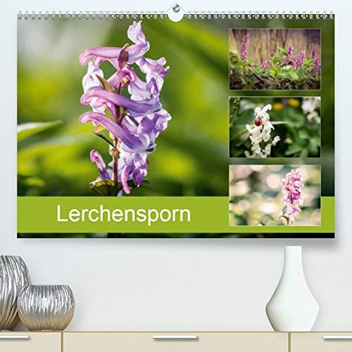Lerchensporn(Premium, hochwertiger DIN A2 Wandkalender 2020, Kunstdruck in Hochglanz): Der Frühlingsbote (Monatskalender, 14 Seiten ) (CALVENDO Natur)