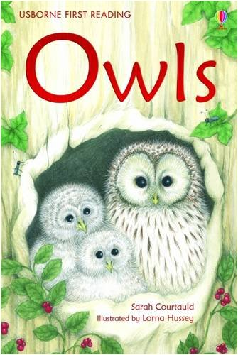 Owls (Usborne First Reading)