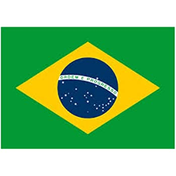Image result for Brazil flag  Evhibitors List 51jjmFJcrbL