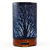 Ultrasonic Aromatherapy Cool Mist Aroma Essential Oil Diffuser, Whisper Quiet Humidifier with Diffuse