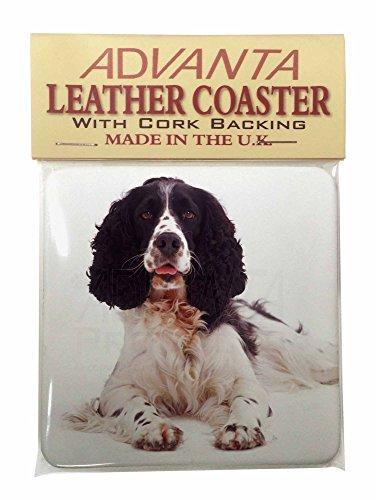 black-and-white-springer-spaniel-single-leather-photo-coaster-animal-breed-gift