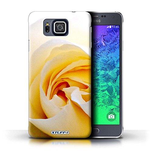 Kobalt® Imprimé Etui / Coque pour Samsung Galaxy Alpha / Begonia conception / Série floral Fleurs Blanc Rose