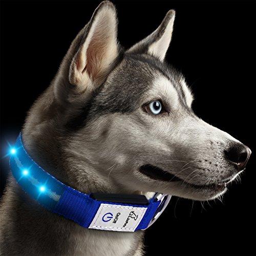 JuzPetz El Collar Recargable del Perro del LED