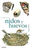 Nidos Y Huevos(Naturaleza-Aves)