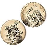 Zwei magnets, Alice und das weiße Kaninchen