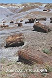 Petrified Forest National Park 2019 Daily Planner: 6' x 9' 2019 Daily Planner