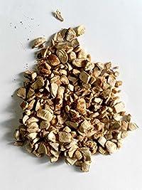 Sky Fruit Mahogany Swietenia Macrophylla  (Export A-1 Quality Peeled Seeds 50gms)