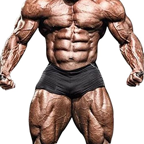 Alivebody Herren Bodybuilding Sport Shorts 4 inseam Cool Dry Workout Kurze Hose Schwarz