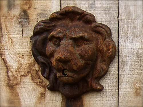 Antikas - Löwenkopf Wasser Auslauf für Wandbrunnen - Brunnen - Dekoration Wand Speier