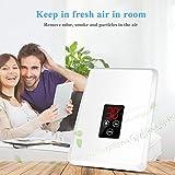 Generatore di ozono, purificatore d'aria Sterilizzatore ad acqua per frutta Pulitore per disinfezione dell'aria con schermi LCD per frutta e verdura(EU Plug)