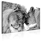 decomonkey | Bilder Wandbilder Löwe Afrika 120x80 cm | 1 Teilig | Leinwandbilder | Bild auf Leinwand | Vlies | Wandbild | Kunstdruck | Wanddeko | Wand | Wohnzimmer | Wanddekoration | Deko | Tiere Wildlife Natur