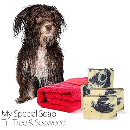 shampooing-pour-chien-savon-ti-tree-algues-savon-bio-fait-main-savon-naturel-110g