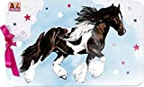 Spiegelburg 14550 Melamin Brettchen Pferdefreunde