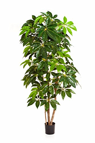 artplants – Deko Schefflera Deluxe Cooper, getopft, grün, 220 cm – Künstlicher Baum/Kunststoff Pflanze