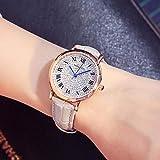 Correa Reloj Moda Tendencia Correa Reloj Mujer Estudiante Casual Rhinestone Decoración Moda Reloj Personalizado D021 Gris