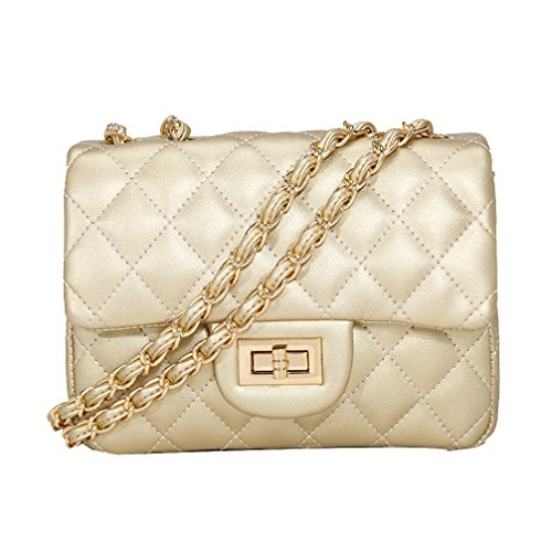 Small Gold Chain Quilted Shoulder Bag Mini Cross Body Women Handbag Clutch Classic Evening Bag (20*15*7cm), by TOYU S Lady (Gold)