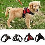 LA VIE Hundegeschirr Einstellbar Nylon Weiche Bequeme Einfach Sicher Kontrolle Geschirr für Kleiner Mittlerer und Großer Hunde Welpen Haustier S Rot