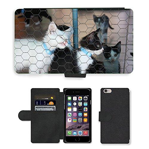 Just Mobile pour Hot Style Téléphone portable étui portefeuille en cuir PU avec fente pour carte//m00139743chaton chat niche pour chat Kitty/Chat/Apple iPhone 6Plus 14cm