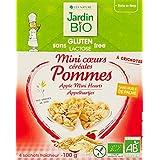 Jardin Bio Mini Cœurs Céréales Pommes sans Gluten 100 g - Lot de 4