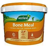 Westland Bonemeal Root Builder, 10 kg