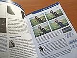 Image de Das Praxisbuch zu Affinity Photo - Bilder professionell bearbeiten am Mac / auch für Phot