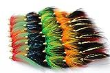Best Pesca con mosca vuela - 40pcs cono cabeza tubo vuela 5patrones surtidos Popular Review