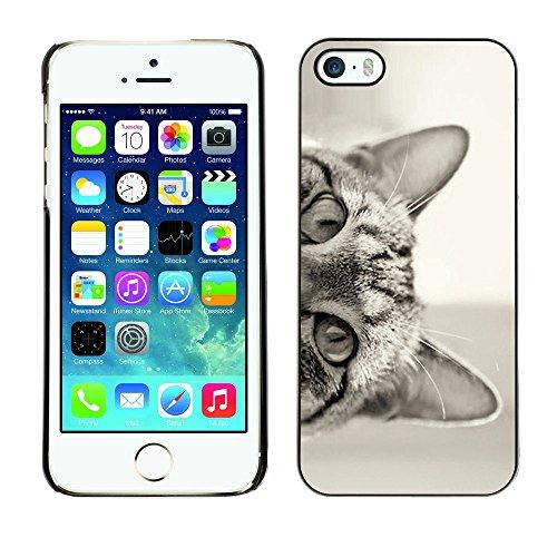 Paccase / Tasche Schutzhülle Case Cover Hülle Für - Cat Peeking Black White Eyes Ears - Apple Iphone 5 / 5S