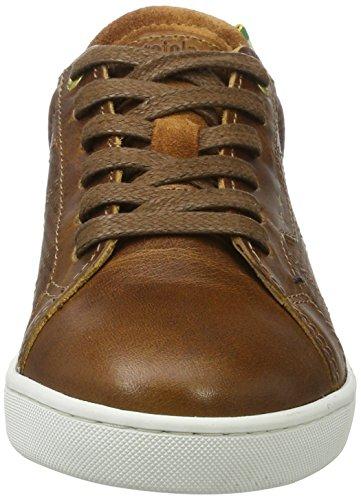 899f97a0 Shell Pantofola D'oro Jungen Sneaker Canaverse tortoise Low Ragazzi Braun  qU8UZwx6