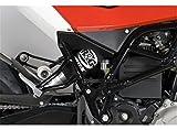 Schutz Stoßdämpfer 1199Panigale 12–13RG Racing