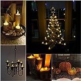 24 LED Kerzen, Diyife® LED Flammenlose Tealights, Flackern Teelichter, elektrische Kerze Lichter Batterie Dekoration für Weihnachten, Weihnachtsbaum, Ostern, Hochzeit, Party [Batterien enthalten] Test