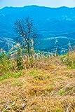 Alu-Dibond-Bild 50 x 80 cm: 'Mountain view in Phayao province, Thailand.', Bild auf Alu-Dibond