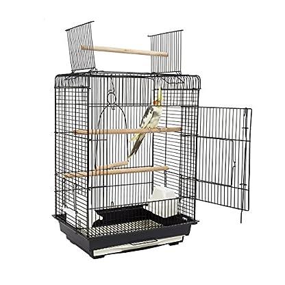 fun Orlando Birdcage 1