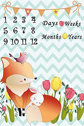 stone Decke, 40×60 Zoll Säugling Neugeborenes erstes Jahr Fox Milestone Decke, Flanell Fleece, beste Baby-Dusche-Geschenk, Fotografie Kulisse Foto Prop ()