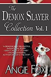 Accidental Demon Slayer Boxed Set Vol I (Books 1-3) (English Edition)