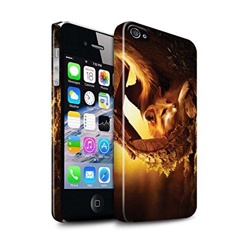 Officiel Elena Dudina Coque / Clipser Brillant Etui pour Apple iPhone 4/4S / Loups Blancs Design / Les Animaux Collection Jacinthe