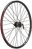 Pro Build Front Wheel Disc - Black, 27.5 Inch