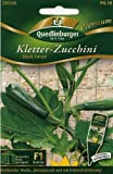 Kletterzucchini, Black Forest F1