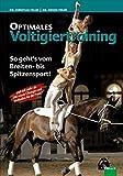 Optimales Voltigiertraining: So geht's vom Breiten- bis zum Spitzensport - Dr. Christian Peiler, Dr. Dennis Peiler