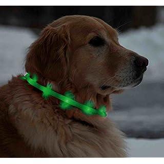 ArturoLudwig Licht LED-Leuchthalsband für Hunde, 70 cm, universell kürzbar - Gruen by